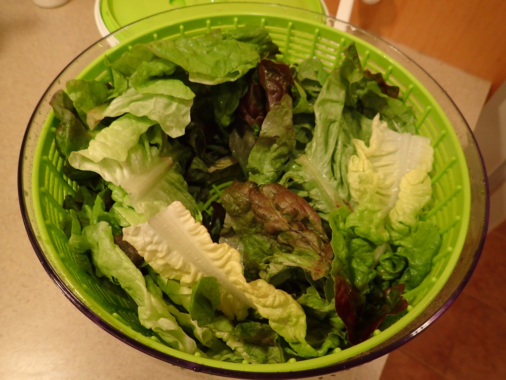 Rinse and dry lettuce